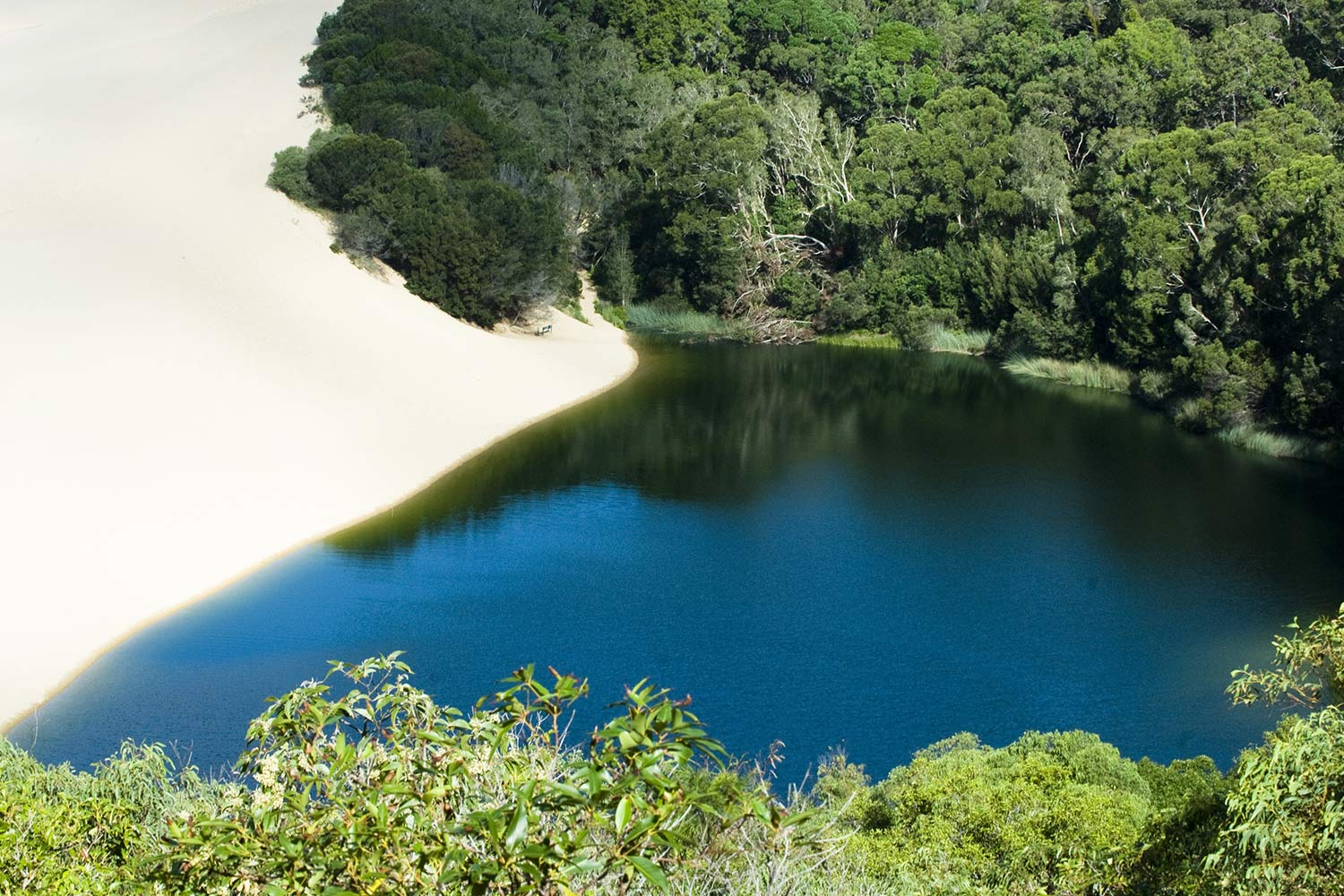 Fraser Island Tour Lake Wobby